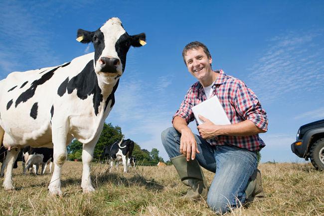 Bioplynka se hodí i majitelům hospodářských zvířat.
